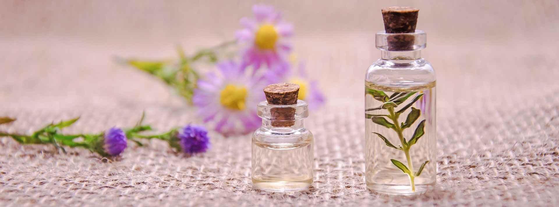 Aceites Esenciales Piojos y Liendres
